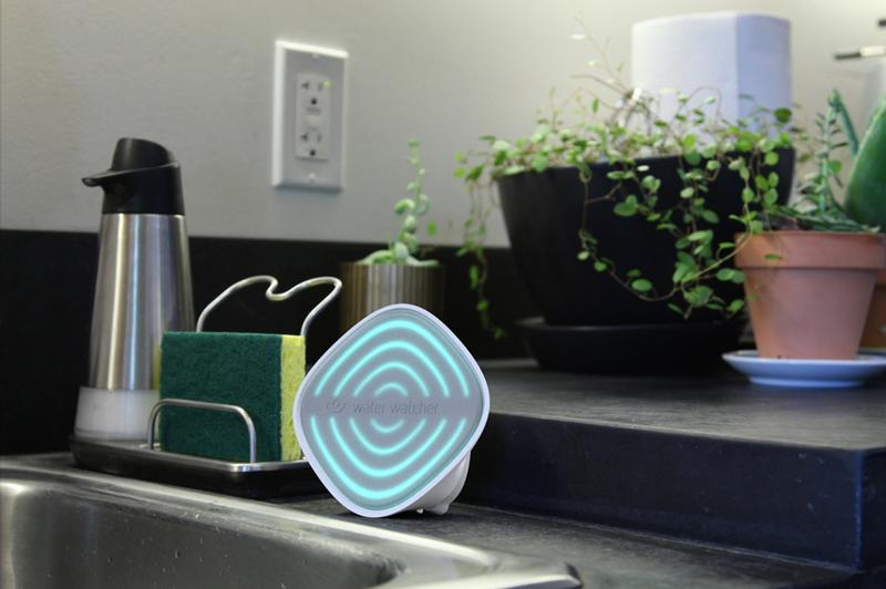 Water Watcher by Smart Design (indicator in use)