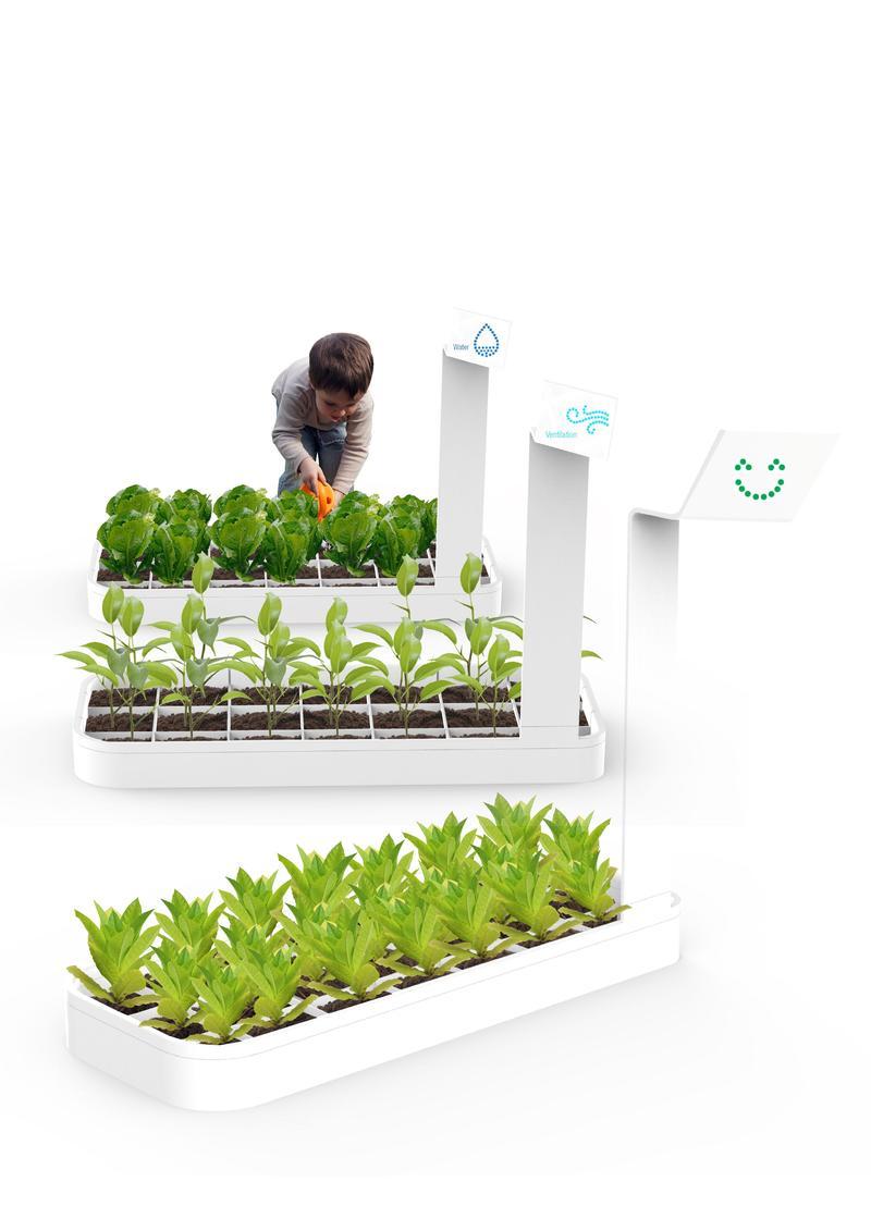 Plants Communication System